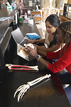 Kine students in lab